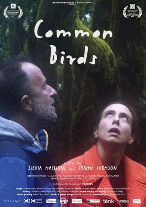 Common_Birds_La-Gomera_Film-Commission